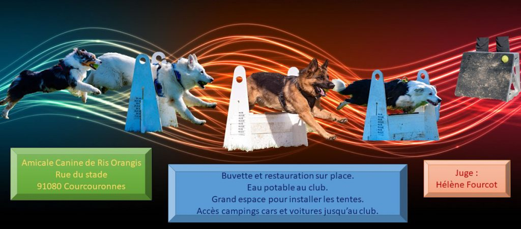 Concours flyball samedi 28/03/2020